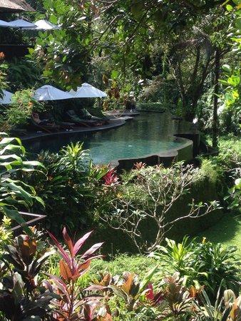 Maya Ubud Resort & Spa: Chill out pool