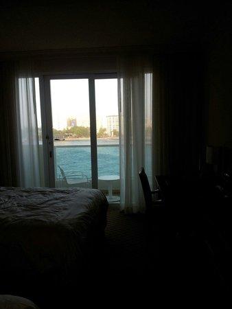Condado Lagoon Villas at Caribe Hilton: Ocean view