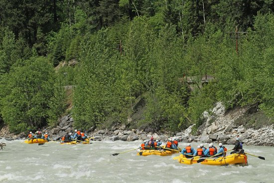Glacier Raft Company - Day Tours: kicking horse river