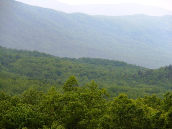 Arrow Creek Campground: Mountains in Gatlinsburg, Te