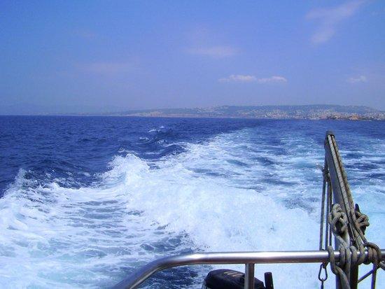 """Captain Nick's Glass Bottom Boat Aphrodite: Βολτάροντας με την 'Αφροδίτη"""""""