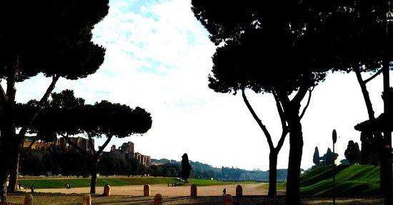 Walking the length of Circus Maximus