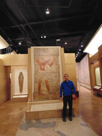 Royal Ontario Museum (ROM): Royal  Ontario Muzeum Toronto Canada