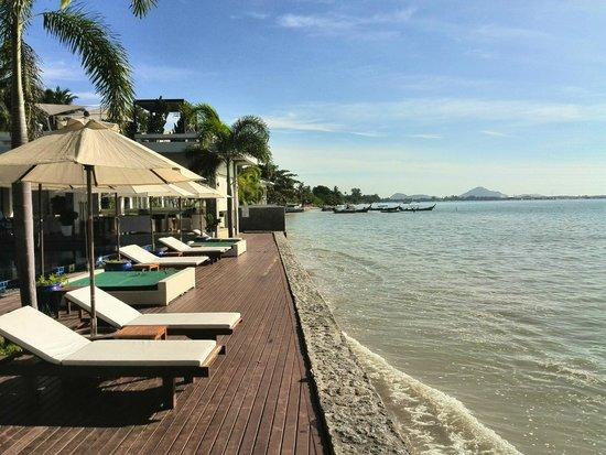 Serenity Resort & Residences Phuket: sunbathing squad