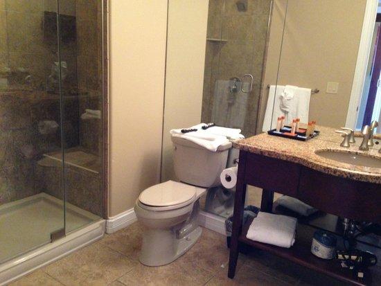 Camden on the Lake Resort : Bathroom