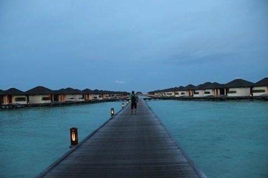 Paradise Island Resort & Spa: Way to water bungalows, Ocean villas & heaven villa's.