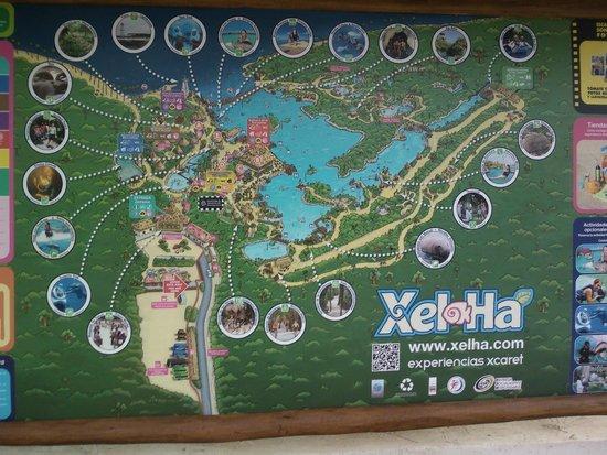 Parc Xel-Ha : divertido