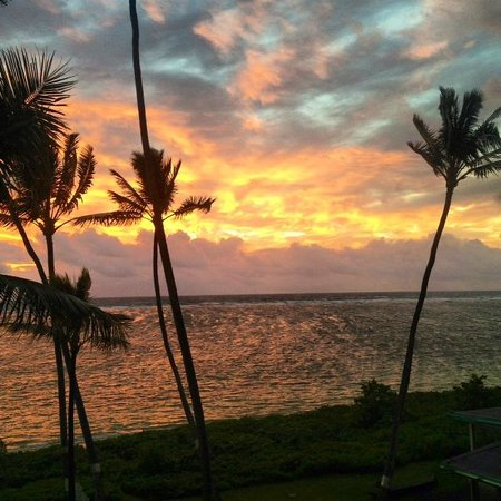 Pat's at Punalu'u : Sunrise view from the lanai