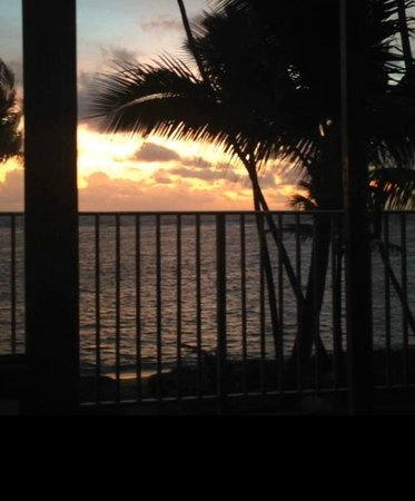 Pat's at Punalu'u : Sunrise view from inside family room