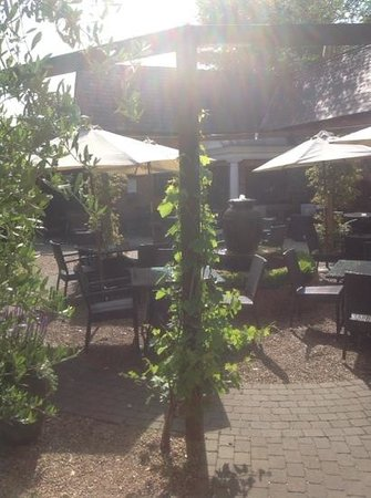 The Walter Arms: The courtyard looking beautiful in summer!