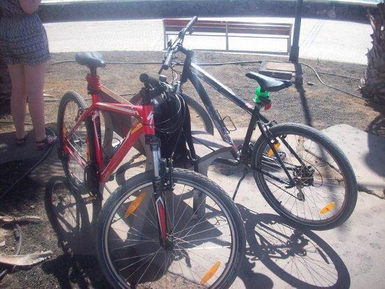 Revolution Bikes: Hired Bikes