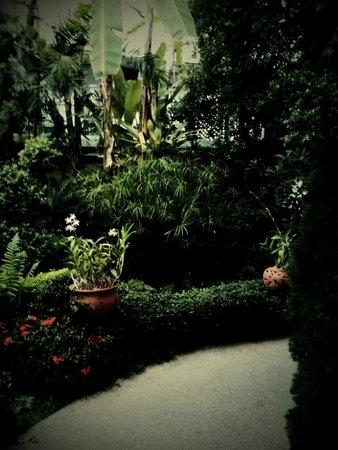 Eurana Boutique Hotel: สวนในโรงแรม