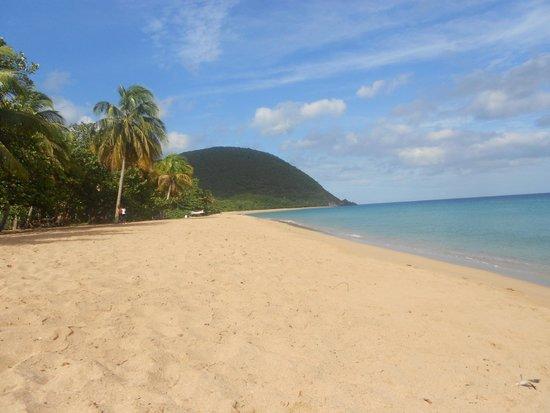 Habitation Grande Anse : plage