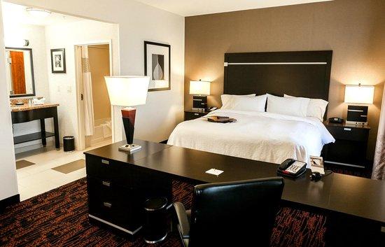 Hampton Inn and Suites Tulsa Hills: King Studio Suite