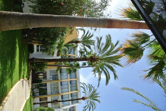Protur Sa Coma Playa Hotel & Spa: vue hotel
