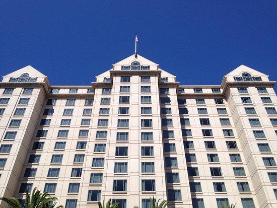 The Fairmont San Jose : Vista da piscina