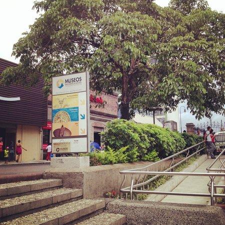 Museo del Oro Precolombino: Precolumbian Gold Museum
