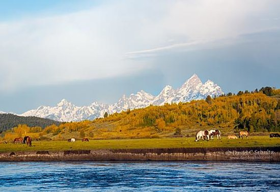 Heart Six Guest Ranch : View of the Tetons from the ranch.