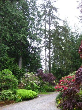 Domaine Madeleine: A garden path