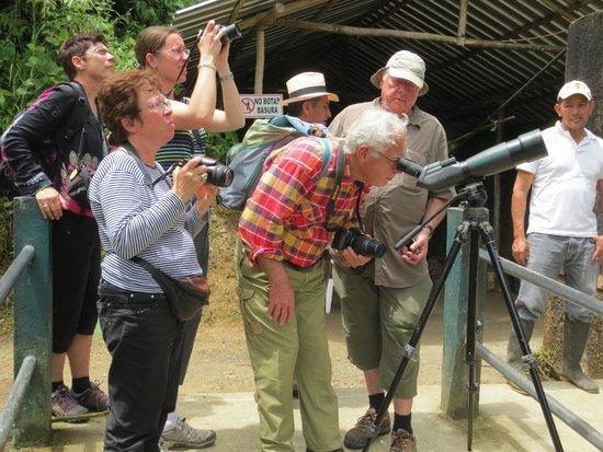 Cabanas Armonia y Jardin de Orquideas : Observación de flora y fauna