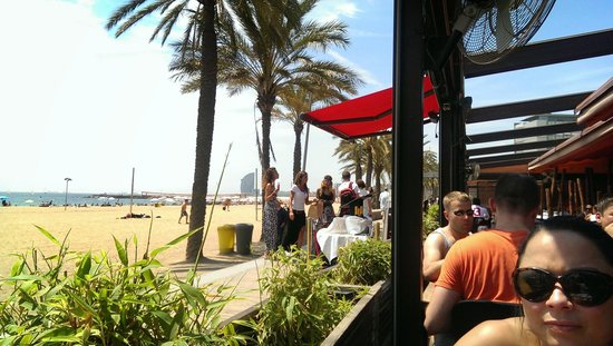 Shoko : view from the front table