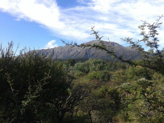 Cabanas La Lomada: Vista desde la terraza