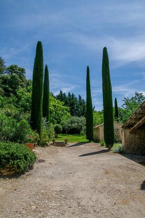 Chateau Double : Garden with cypresses