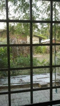 Amelia's Guesthouse: A view from inside