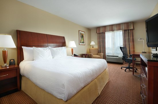 Hilton Garden Inn Schaumburg: Standard King Room