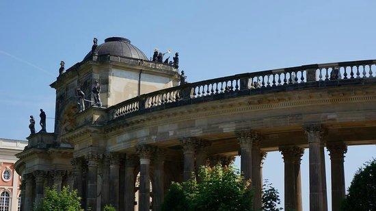 Parque Sanssouci: วิวรอบๆ
