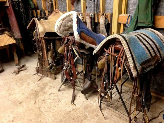 Twin Elm Guest Ranch : Tack room