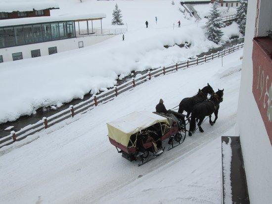 Hotel Haldenhof: Sleigh passing Haldenhof