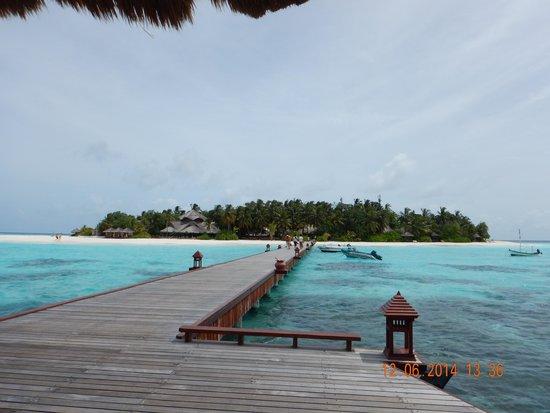 Banyan Tree Vabbinfaru: a journey to one of a kind island experience