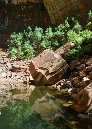 Zion's Main Canyon: Upper Emerald Pool