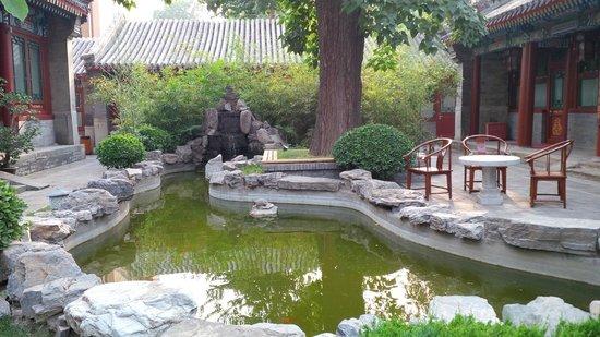 Soluxe Sunshine Courtyard Hotel: garden