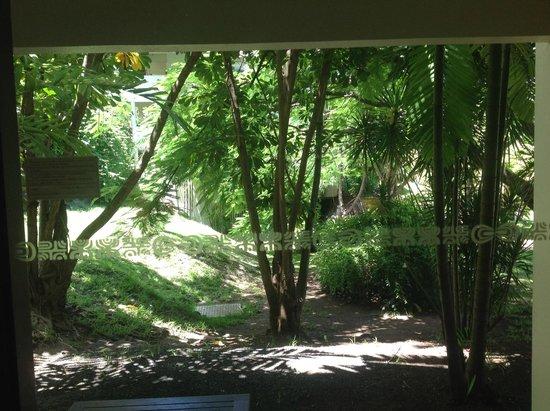 InterContinental Tahiti Resort & Spa: chambre côté jardin