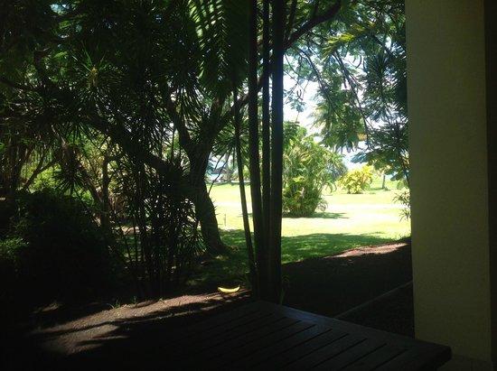 InterContinental Tahiti Resort & Spa: le jardin