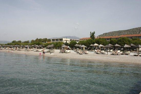Doryssa Seaside Resort: Strand