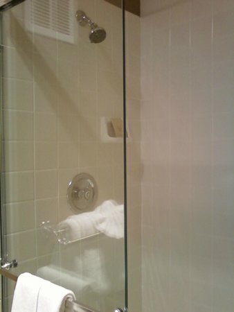 Governors Inn Hotel: clean shower stall