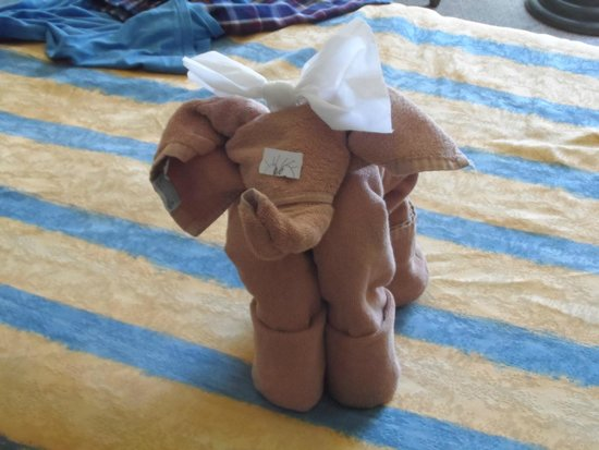 ClubHotel Riu Chiclana: I just love my elephant