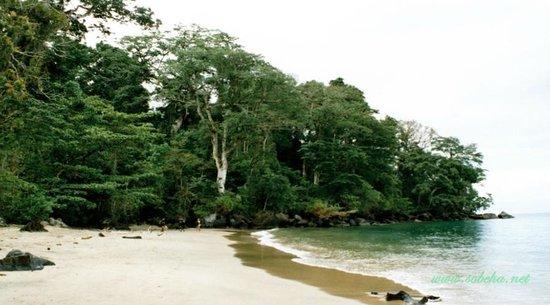 Maroantsetra: Masoala National Park