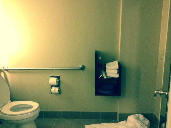 Peacock Suites: bathroom
