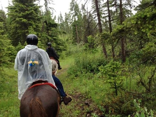 Kelowna Stables at Myra Canyon Ranch: Tranquil preserve trail ride