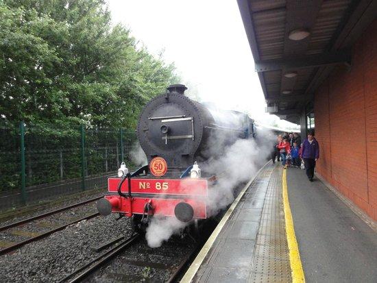 Steam Train Rides: Central