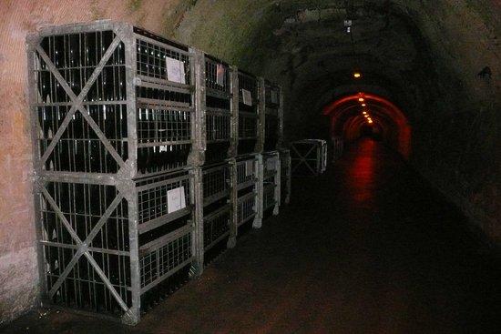 Mercier : Cave