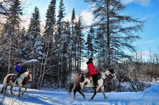 Daaquam Outfitters and Resort: randonnée hivernale à cheval