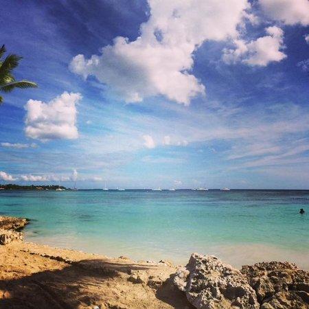 Dreams La Romana Resort & Spa: Beautiful Beach