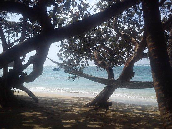 Sugar Reef Bequia : paradise!!