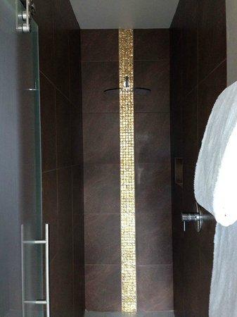 Edgar House: Walk-in Shower