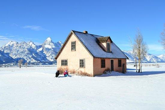 Antelope Flats : moulton barn winter